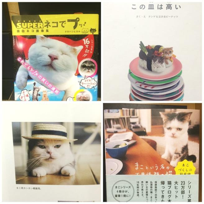 Kinokuniya Cats